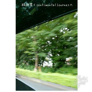 緑雨濃くsentimentaljourney へ