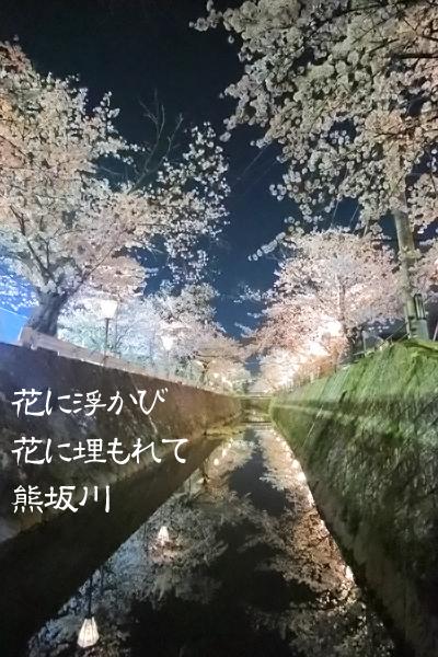 花に浮かび花に埋もれて熊坂川