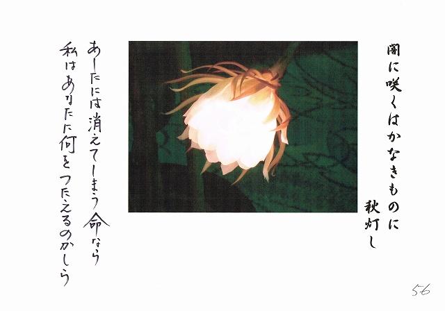 2014-10- (35)